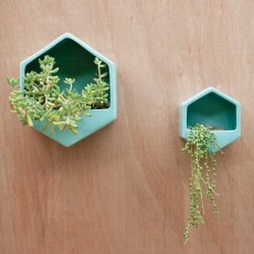 Hexagon Turquoise Large Wall Planter